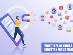What-Type-of-Things-that-Industry-Focus-Majorly